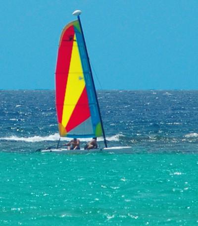 Little Cayman Hoby